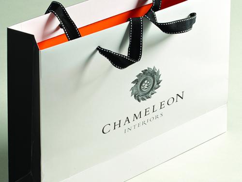 Chameleon_3